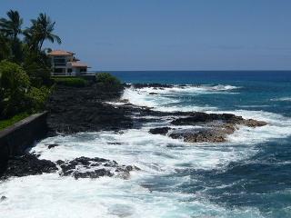 Kona Riviera Villas  #202 - Kailua-Kona vacation rentals