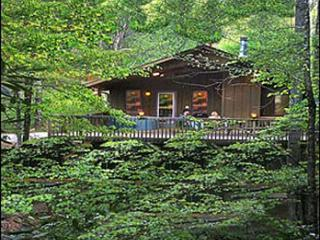 Bryson City, North Carolina - A-Frame Chalet - Bryson City vacation rentals