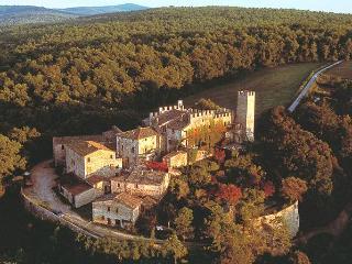 CASTELLO DI MONTALTO - 2 bedroom Villa in Chianti - Chianti vacation rentals