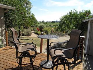 Charming VineHaven in Dry Creek Near Plaza - Healdsburg vacation rentals
