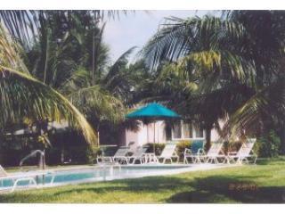 Pool - Palms Of Sanibel - Sanibel Island - rentals