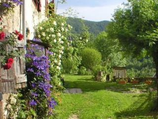 The garden in summer. - TV Winner for <7 in mountain hamlet. Superb views - Oust - rentals