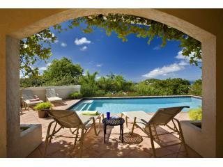 Ristaba's shaded and sundeck at the pool - Ristaba 6 bedroom luxury villa St John USVI - Saint John - rentals