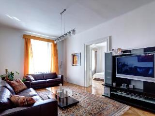 New Town Luxury by Wenceslav Square, high ceilings - Prague vacation rentals