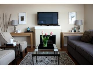Living Area (Queen-Size Sofa Bed) - HOTEL LUXURY : RICHMOND 2BR/2BA by COMFYSUITES - Richmond - rentals
