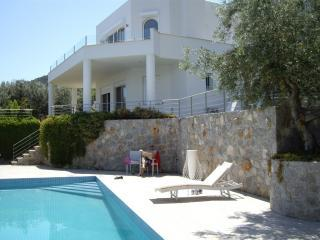 Villa with private pool and fantastic view - Epidavros vacation rentals