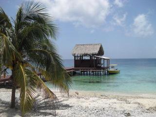 Big Rock Cabana- Private Beach, Dive Boat, Captain - Utila vacation rentals