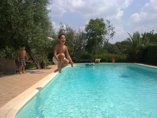Swimmingpool - Villa Olivia Rentals in Signa, Tuscany - Signa - rentals