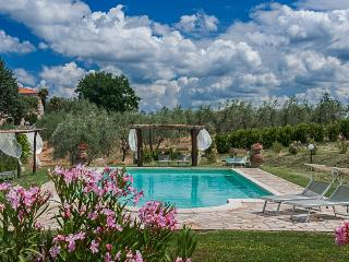 Apartments in Villa Near Pisa. Breathtaking views. - Castellina Marittima vacation rentals