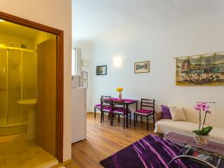 Apartments in Dubrovnik Old Town Center - Zaton (Dubrovnik) vacation rentals