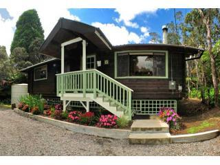 Hale Sweet Hale is surrounded by towering ohia trees and magnificent hapu\'u ferns. - Hale Sweet Hale- As seen on HGTV log cabin living! - Volcano - rentals