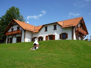 VILLA VICTORIA- Luxury Family House near lake&ski - Cesky Krumlov vacation rentals