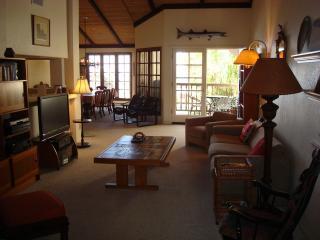 Oceanfront Condo Encinitas, 126 Direct Beach, Pool - Encinitas vacation rentals