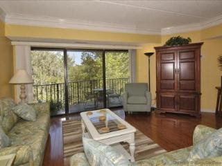 301 Forest Beach Villas - FB301 - Hilton Head vacation rentals