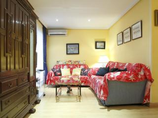 Extraordinary flat in Madrid city center - Madrid vacation rentals