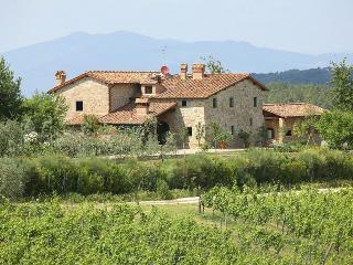 Casale Classico - Montefiridolfi vacation rentals