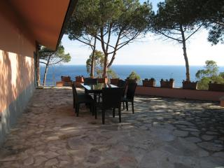 Wonderful Rental at Villa Eucalipto on Elba Island - Elba Island vacation rentals