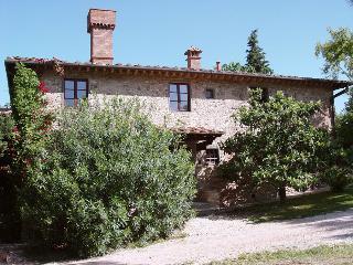 Villa Teatro Vacation Rental with Pool - Montespertoli vacation rentals