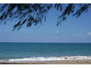 San Juan Area 4 bdrm Beach House & Car ~ on ocean! - San Juan vacation rentals