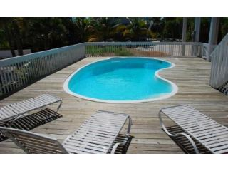 private pool - What The Shell -Pool - Sleeps 10  New owners! - Captiva Island - rentals