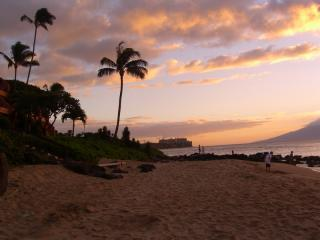 View of the condo, from the beach, just out the door - Charming OCEANFRONT Beach CONDO - The Kuleana 415 - Lahaina - rentals