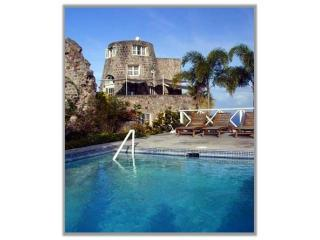 View of the mill from the pool - Historic Vervain Mill on Nevis - Nevis - rentals