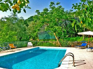 LA VIGNA - 2 Bedrooms - Massa Lubrense - Sorrento - Massa Lubrense vacation rentals