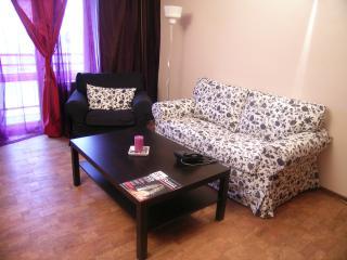 Polyanka Apartment ID 138 - Central Russia vacation rentals