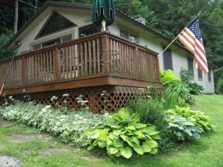 Charming Immaculate Cabin in Beautiful Catskills - Margaretville vacation rentals