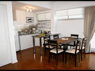 Spacious 8th-Floor Luxury Flat with Balcony, Wi-Fi, Pool, Sauna, Gym (ID#85) - Buenos Aires vacation rentals