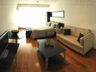 Luxurious Studio in Brand-New Building w/24-hour Security, Pool, WiFi (ID#53) - San Miguel de Monte vacation rentals