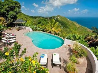 Canefield House - Enchanting house boasts glorious gardens, pool & expansive setting - Tortola vacation rentals