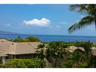 GreatOceanView  Special May and June  $210.00* - Makena vacation rentals
