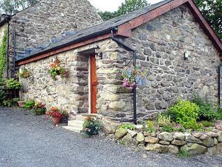 MAES COCH COTTAGE, romantic, country holiday cottage, with a garden in Dolgellau, Ref 3927 - Abergynolwyn vacation rentals
