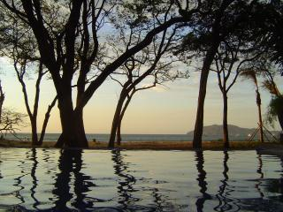 Infinity pool on Tamarindo Beach - Ibis #6 at the Langosta Beach Club - Tamarindo - rentals