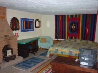 Downstairs One room Efficiency Apartment - San Miguel de Allende vacation rentals