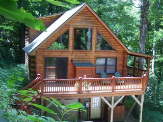 Tall Trees Cabin   WEEKEND GETAWAY SPECIAL  $$$ - Maggie Valley vacation rentals