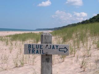Beach,grasses,Blue jay trail sign.JPG - Warren Dunes State Park-Hot Tub-Next to Wineries - Bridgman - rentals