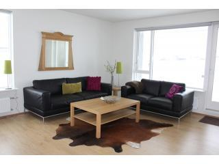 Living room - ground floor apartment - Akureyri Holiday Apartment with beautiful views - Akureyri - rentals