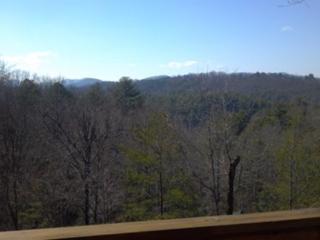 Hammill's Hideaway - Murphy vacation rentals