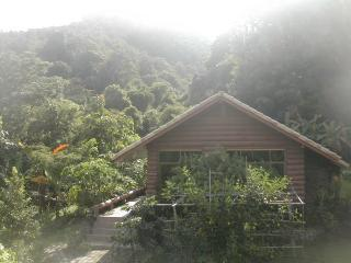 Cabin with Wiang Kosai National Park in background - Punjen Hide-Away Family Tours Something different - Phrae - rentals