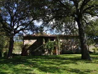Il Sasso - Castiglione Del Lago vacation rentals