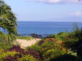 We love this ocean view from our lanai. Enjoy waves crashing, snorkelling & seasonal whale watching. - Wailea Ekahi 7G Luxury Ocean Front S Maui Condo - Wailea - rentals