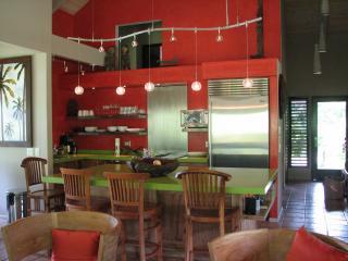 Kitchen and Island - Kilauea Lakeside Estate- Luxury Ecological Resort - Kilauea - rentals