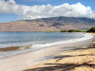 SUGAR BEACH RESORT, #121 - Kihei vacation rentals