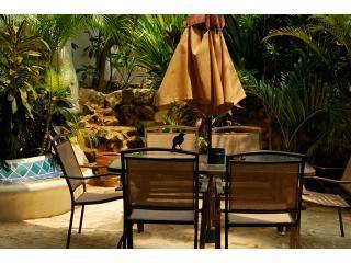 Your Private Terrace - Casa Del Rio, Natz Ti Ha - Steps From Coco Beach - Playa del Carmen - rentals