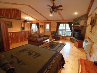 Lake Forest Luxury Log Cabins Sleeps 2-10 people - Eureka Springs vacation rentals