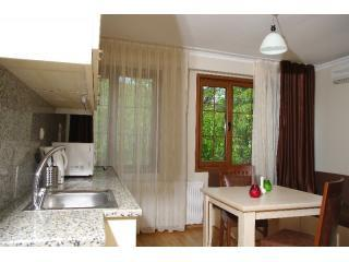 GULHANE SUITES -  SULTANAHMET - Istanbul vacation rentals