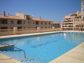 Large swimming pool - Luxury apartment opposite golf course/near beach - Almerimar - rentals