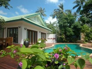 Beach Village House 4 Bedroomed Luxury Beach Villa - Maret vacation rentals